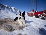 Svalbard Lodge – zdjęcie 18