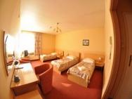 Piemont - hotel Pabianice