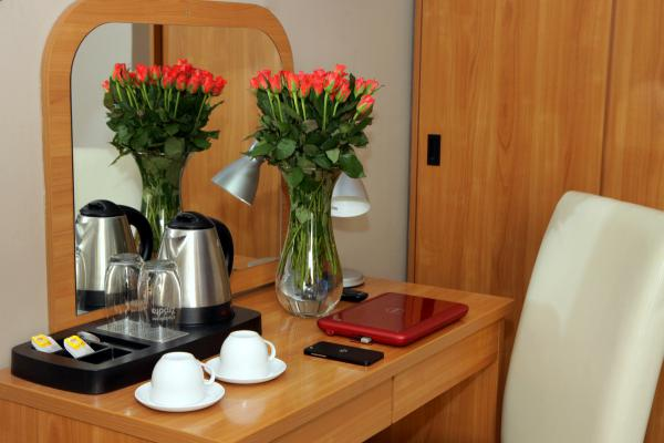 Hotel photo Pegaz