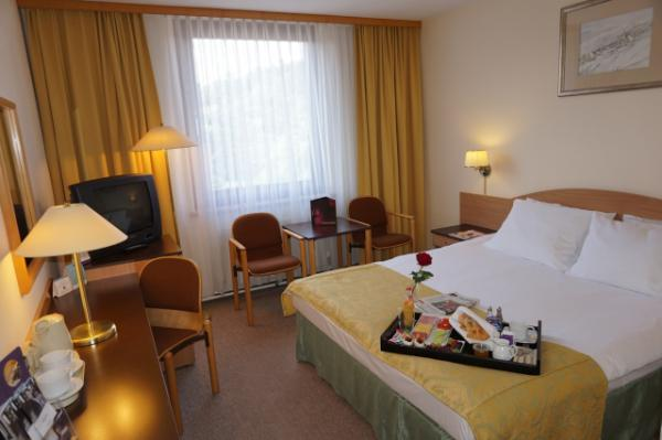 Hotel photo Mercure Jelenia Gora