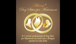 Athena Dog Sitter per Matrimoni
