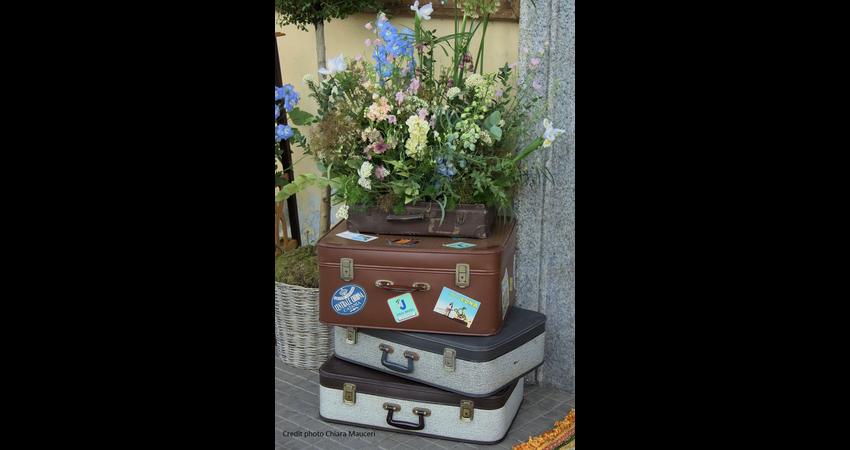 sfumature-cipria-fiori-3.jpg