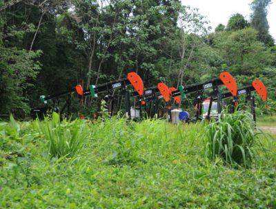 Goudron field in Trinidad and Tobago