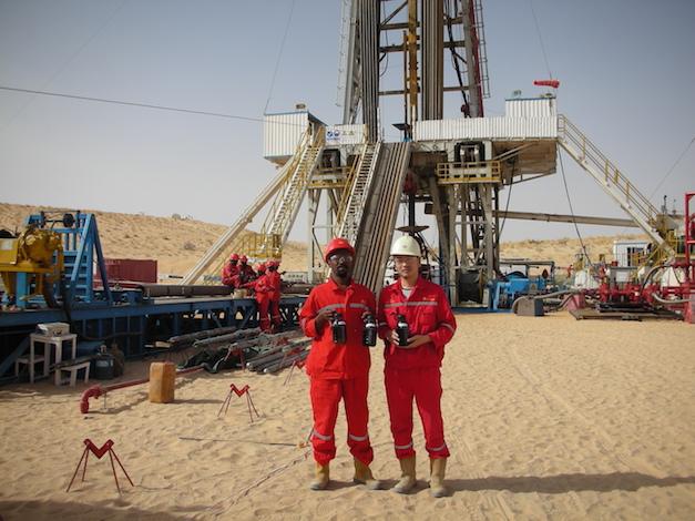 Savannah in new Niger oil find