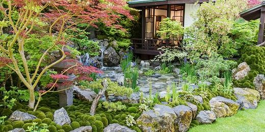 RHS Chelsea Flower Show: 2 Day Break with Hotel & Admission