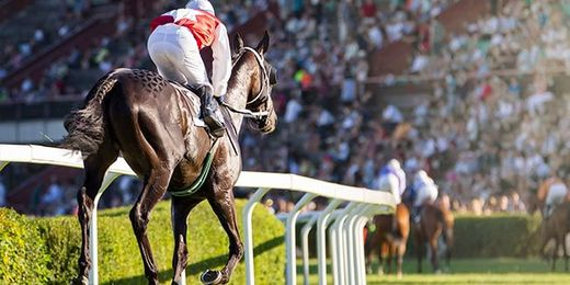 Royal Ascot Ladies Day: 2 Day Break Including Coach Travel, Hotel Stay & Admission to the Windsor Enclosure
