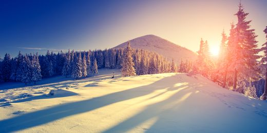 WeSki: The Easiest Way to Book your Group Ski Holidays
