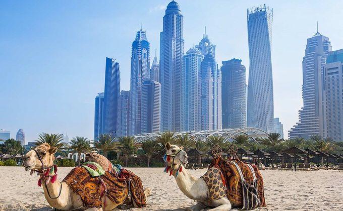 Dubai: 5 Star Half Board Short Break w/Complimentary Drinks & Regional Flights