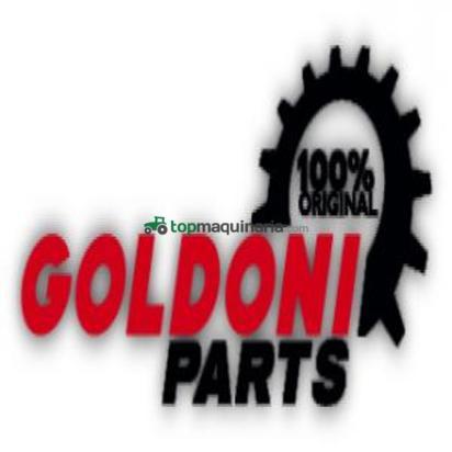 Concesionario oficial GOLDONI - ARBOS - LOVOL