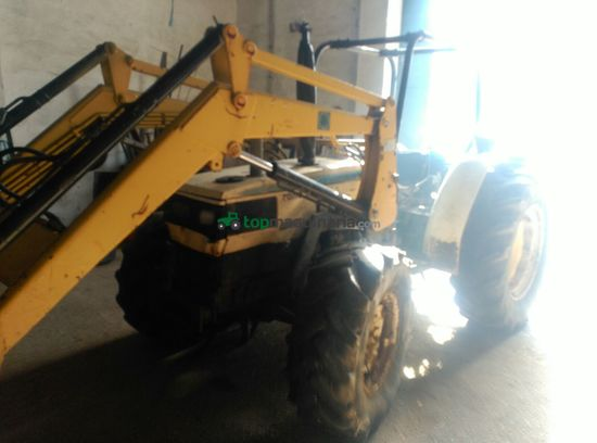 Tractor agrícola - Lamborghini - 564-60