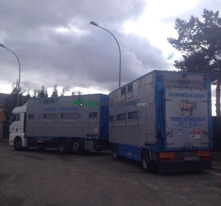 Transporte de ganados Crespo Herguedas.