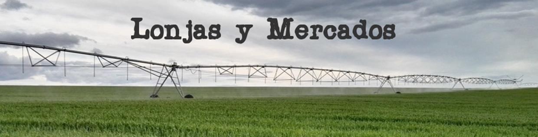 LONJAS DE MERCADOS DE ESPAÑA