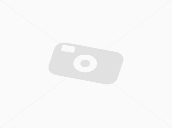 Missing image standard