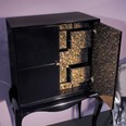 Black gloss cabinet with silver baco inside