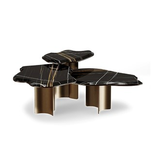 Apotro Centre Table With Sahara Noir Marble | Touched Interiors