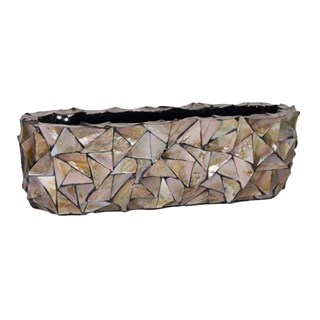 Gosrottie Brown Rectangular Seashell Bowl
