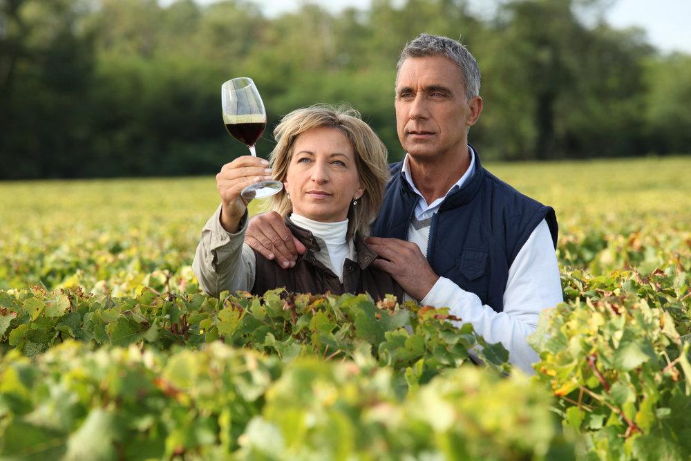 wine-tours-germany
