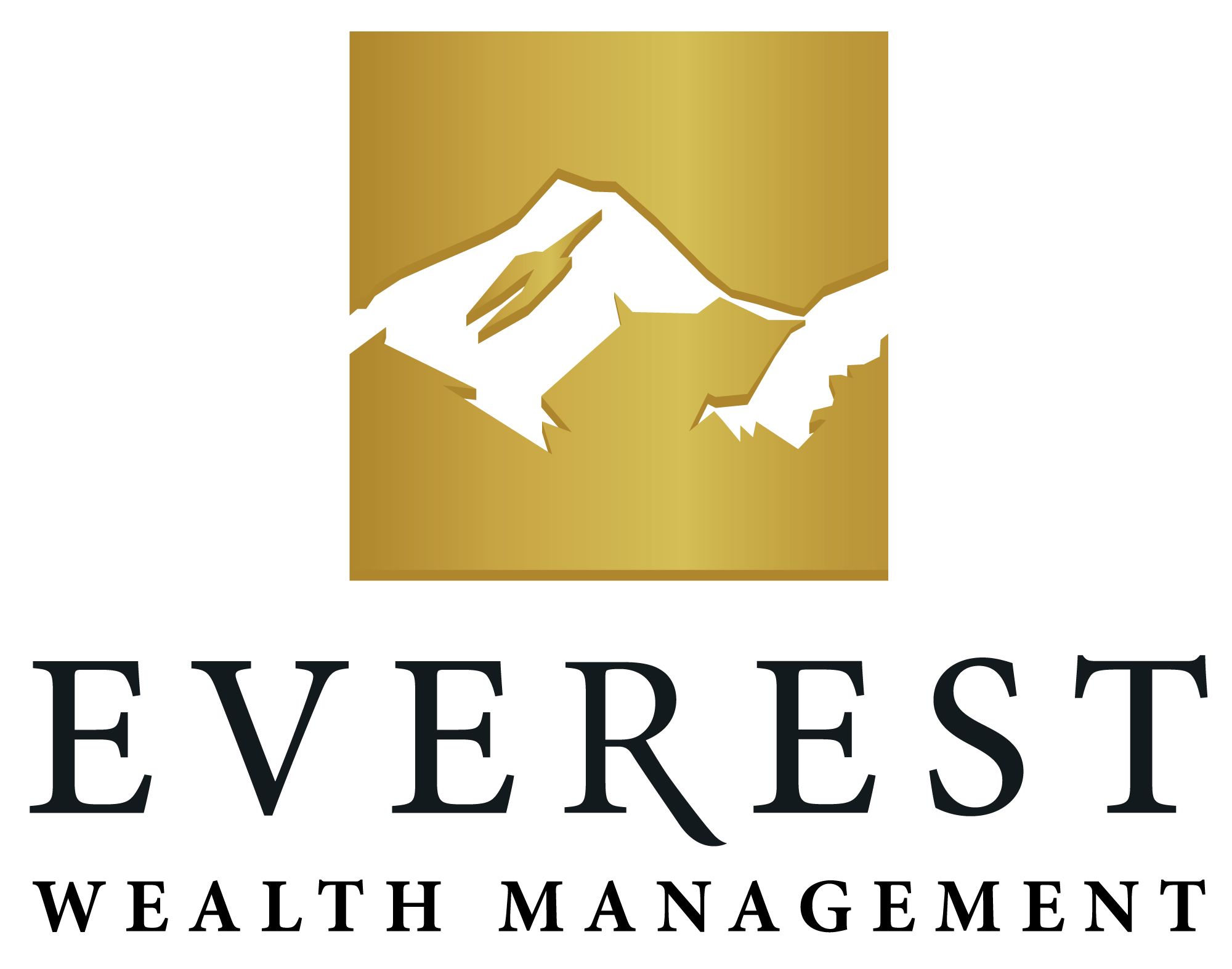 Everest wealth management reviews