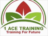 1 Ace Security Ltd