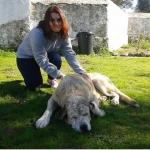 Míriam Muñoz gonzález, Cuidadora de mascotas en Sevilla