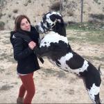 Ariadna Balaguer, Cuidadora de mascotas en Alcoy