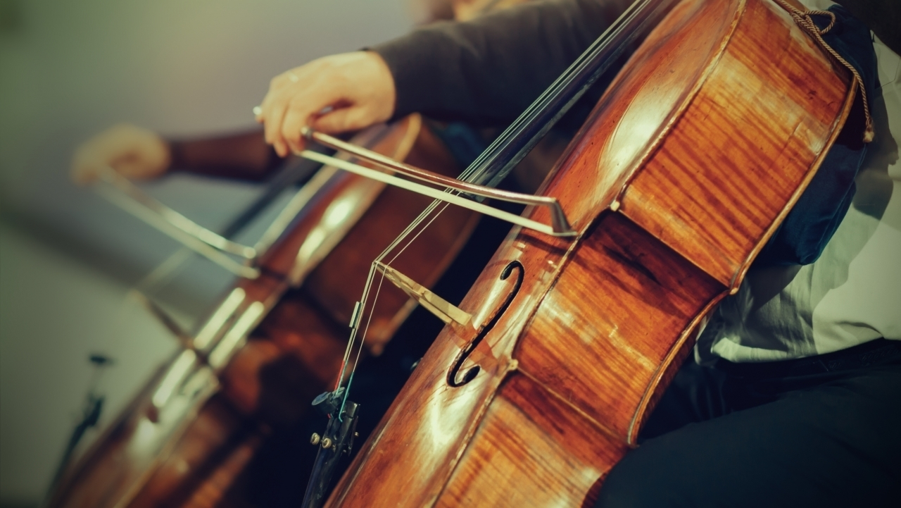 Profesor de violonchelo