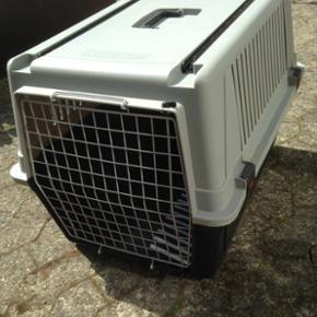 Hundetransportkasse  - Hundetransportkasse