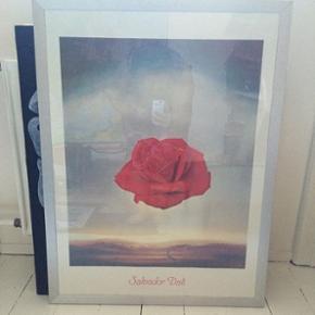 Stor Salvador Dali plakat i ramme sælge - København - Stor Salvador Dali plakat i ramme sælges for 45kr Hentes i Kbh NV - København