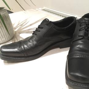 Claudio Conti klassiske sko. Sælger dem - Roskilde - Claudio Conti klassiske sko. Sælger dem for min kæreste da de ellers bare ryger ud. BYD gerne, sælges billigt! (Str.40 men min kæreste bruger 41-42 og kan stadig passe dem) - Roskilde