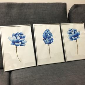 Hand drawn paintings in aquarelle includ - Horsens - Hand drawn paintings in aquarelle including frames 21x30 cm 50 kr per stk - Horsens