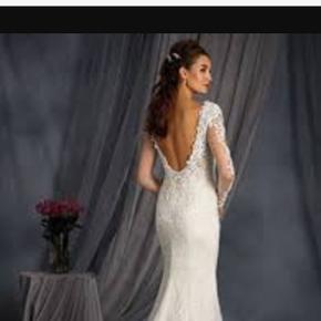 Alfred angelo designer brudekjole - nypr - Haderslev - Alfred angelo designer brudekjole - nypris er 11.000 DKK. Den er netop brugt 2.9.17 og nu nyrenset. Den fremstår som ny er super flot! Den er syet ind fra 40 til en 38, så den er lidt en blanding. Den har enkelte sten, mange blindet og slæb - Haderslev