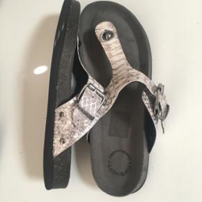 CaShott sandaler - helt nyt. Nypris 750k - Kolding - CaShott sandaler - helt nyt. Nypris 750kr. Små i størrelsen str 42, men svarer til str 41. - Kolding