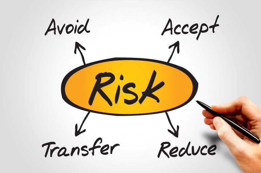 "Image result for risk management in project management"""