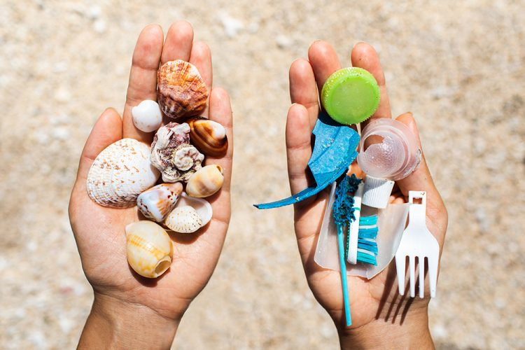 Concept of choice: save nature or continue to use disposable plastic
