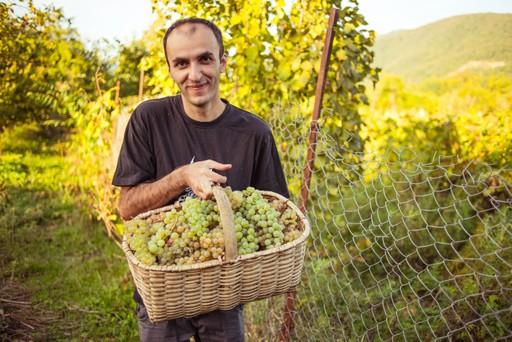 Georgian man holding basket of grapes