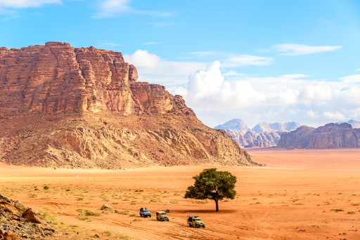 Desert Safari in Wadi Rum, Jordan