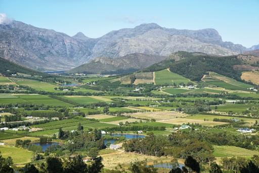 Franschhoek South Africa farming and vineyards landscape