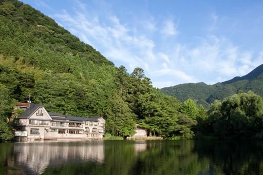 Forrest around edges of Lake Kinrinko, Yufin, Japan
