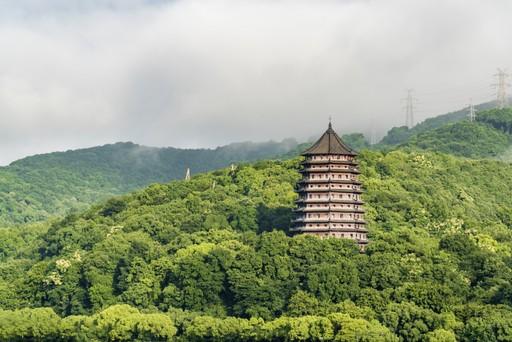 Forest around Liuhe Pagoda in Zhejiang China