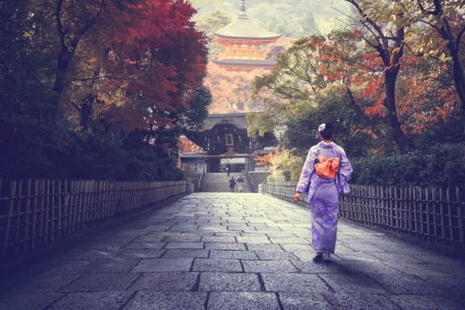 Lady in Japan