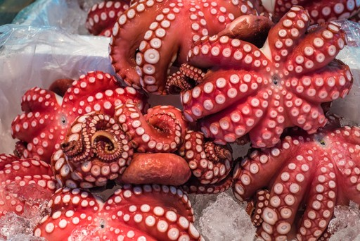 Red Octopus for sale in Tsukiji market, Tokyo