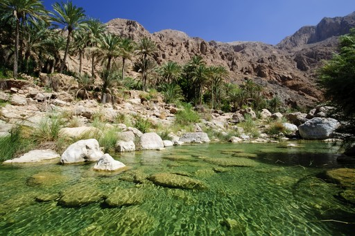 An Oasis in Oman