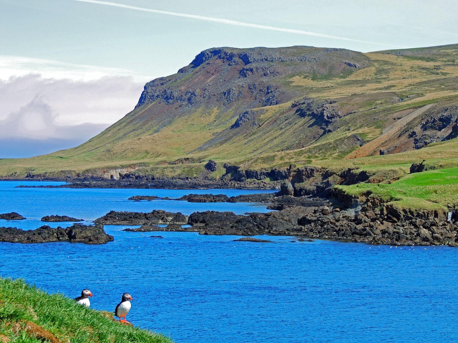 Borgarfjörður in east Iceland
