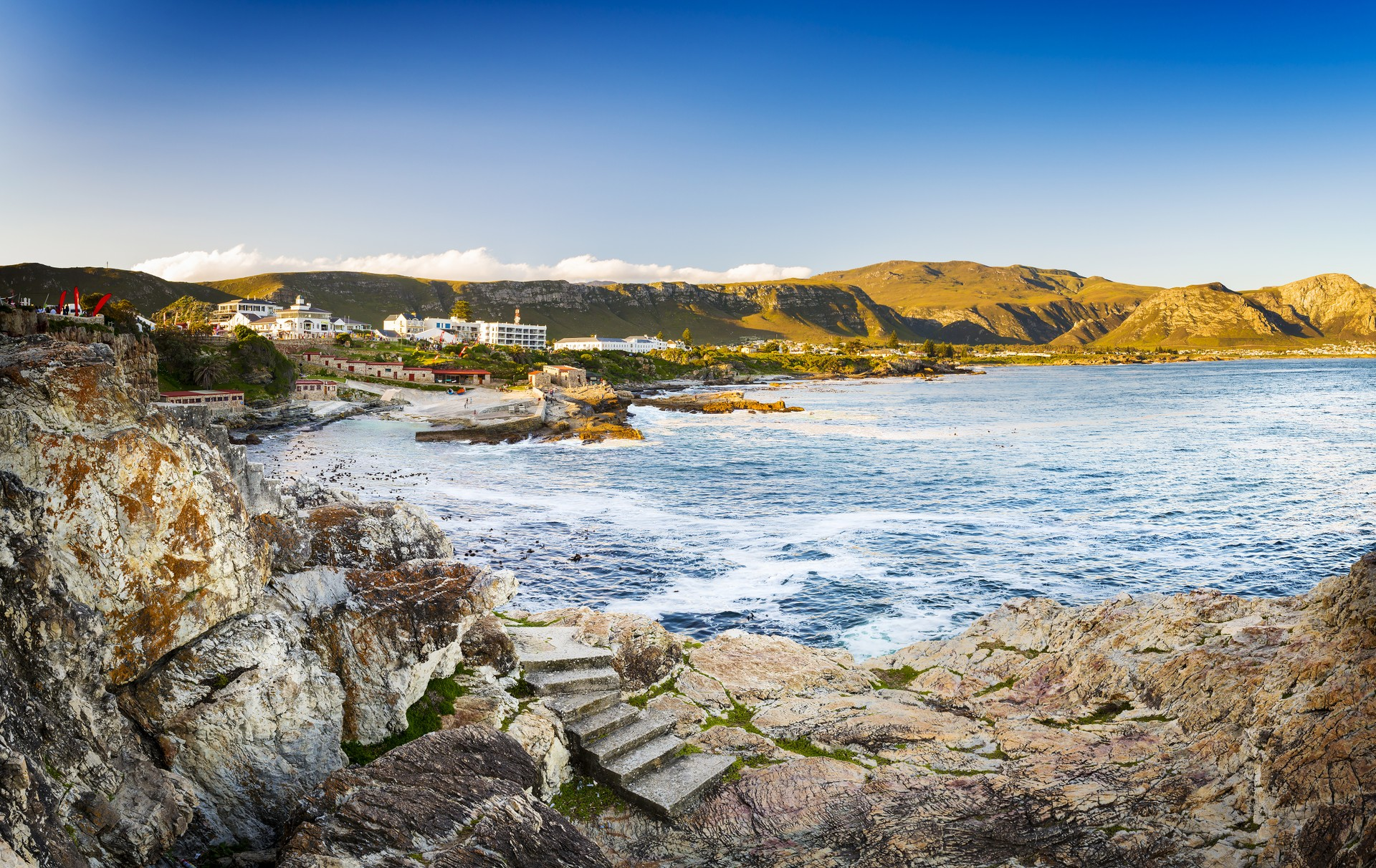 Hermanus - main whale watching town South Africa