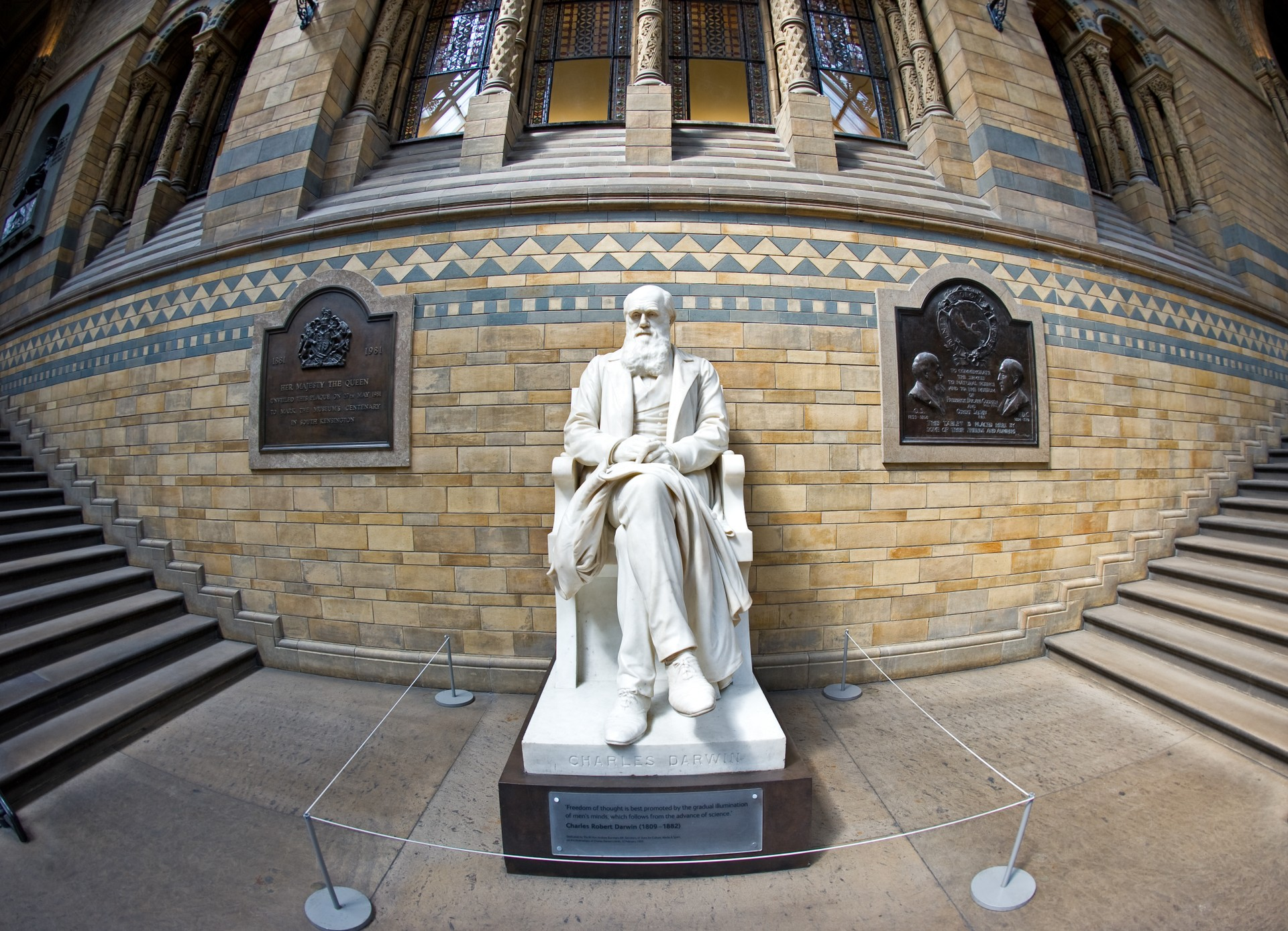 Darwin in the Natural History Museum, London