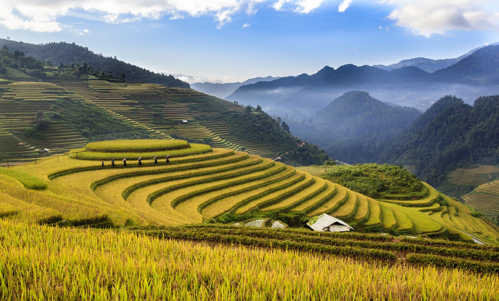 Mu Cang Chai district Vietnam