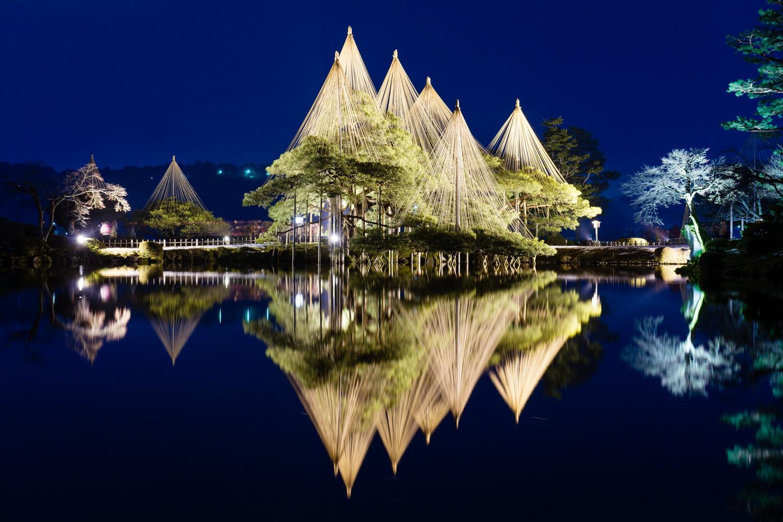 Karasaki Pine, Kenrokuen garden