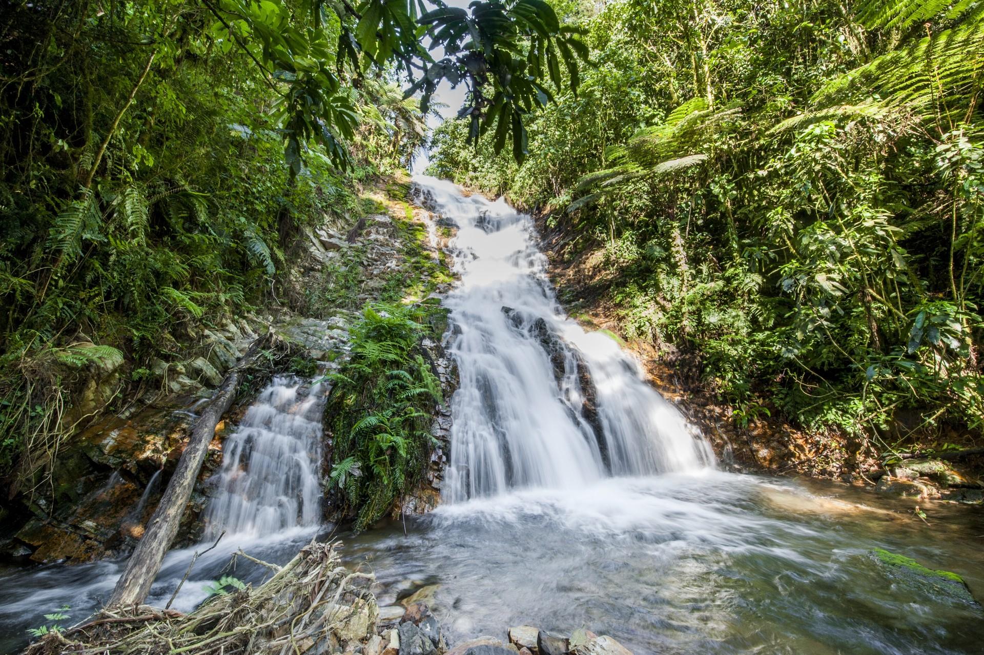 Waterfall in Bwindi National Park