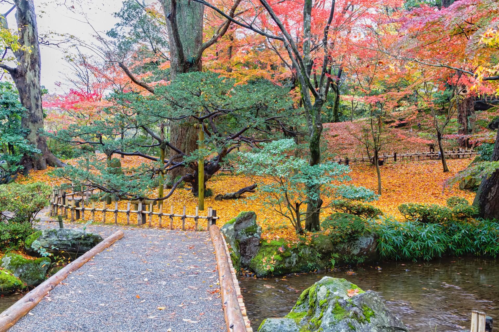 Kenrokuen in autumn