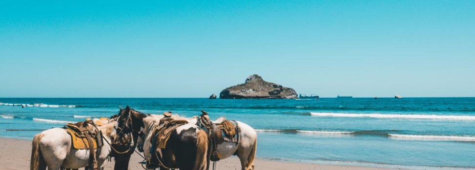 Travel destinations for Horse riding